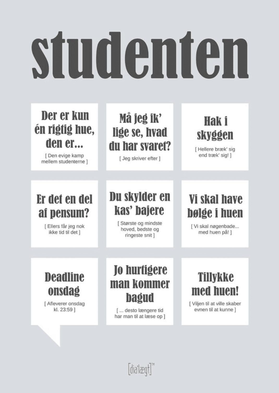 Dialægt Citatplakat Studenten
