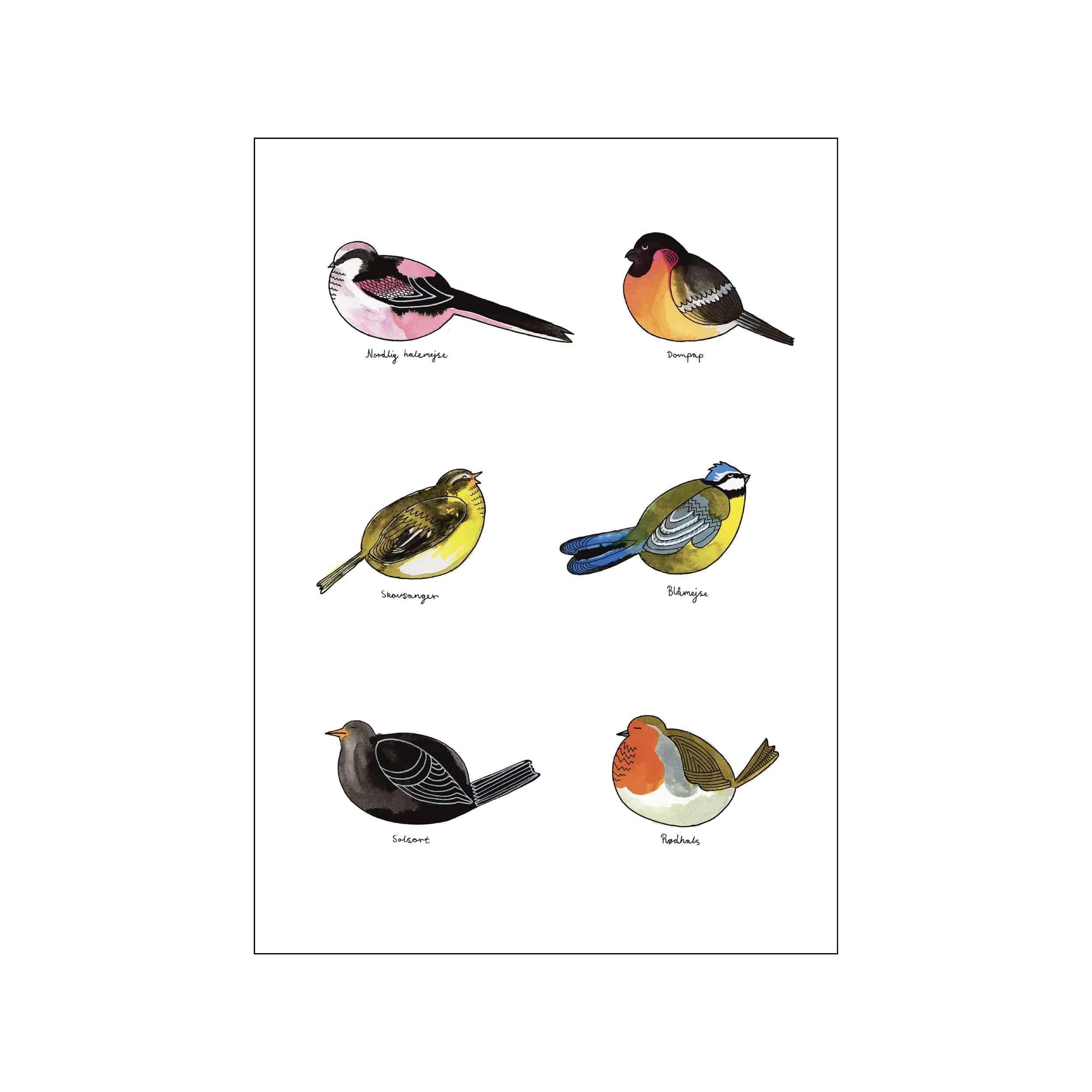 Fugle Plakat
