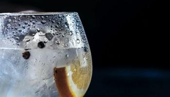 Gin Tonic Julekalender