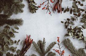 Gaveideer Julegaver
