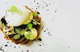Gourmetophold Hotel Thinggaard