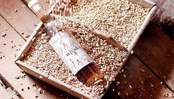 Whiskysmagning i Jylland
