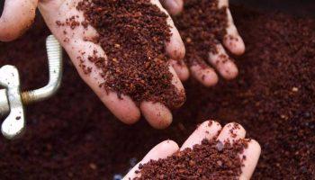 chokoladesmagning hos peter beier