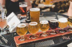 ølsmagning sjælland
